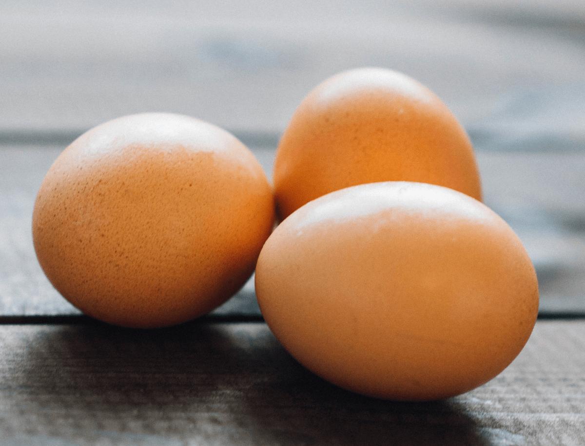 Viaje otoñal día del huevo