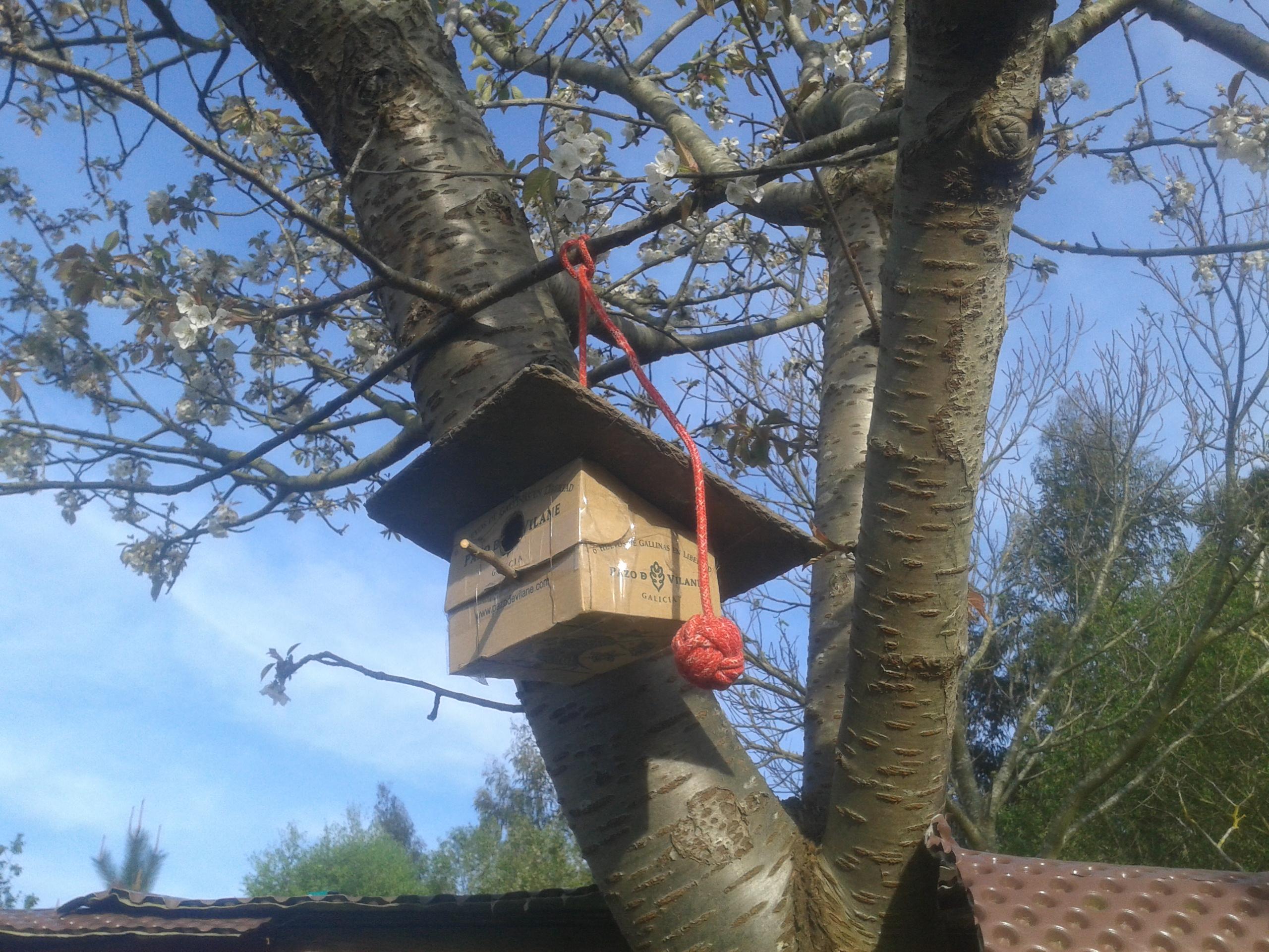 Más ideas para reutilizar la caja de huevo campero Pazo de Vilane