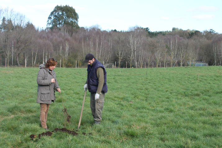 1 idea, 1 árbol: por cada idea recibida, hemos plantado un árbol en Pazo de Vilane