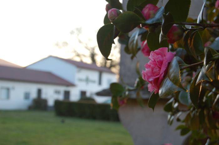 El equinoccio de primavera en Pazo de Vilane