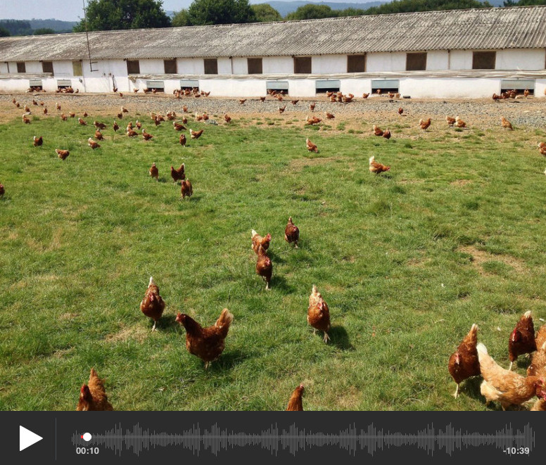 Pazo de Vilane: un proyecto de emprendimiento rural en Galicia