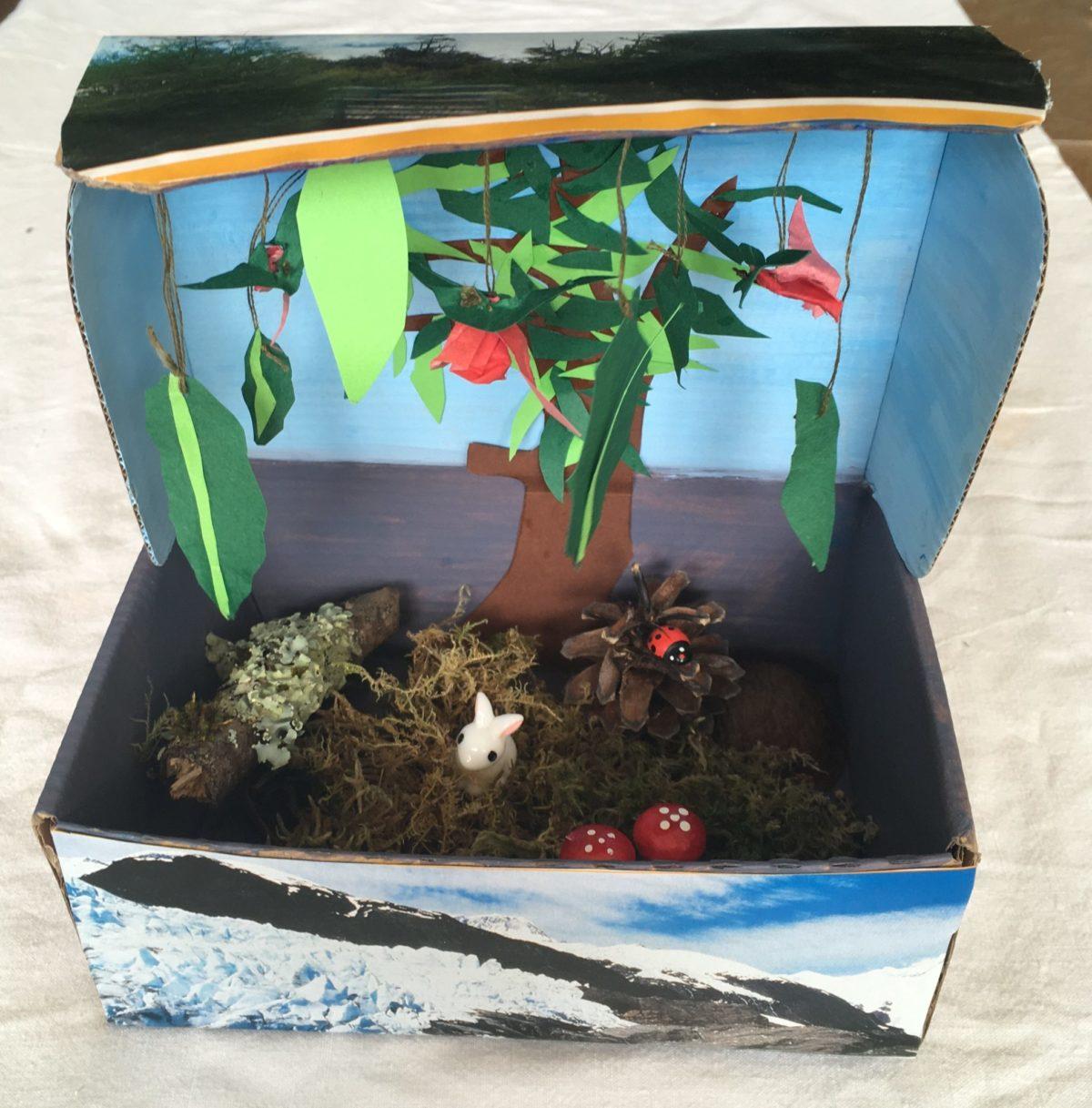 Crea un jardín mágico con la caja de huevo campero Pazo de Vilane