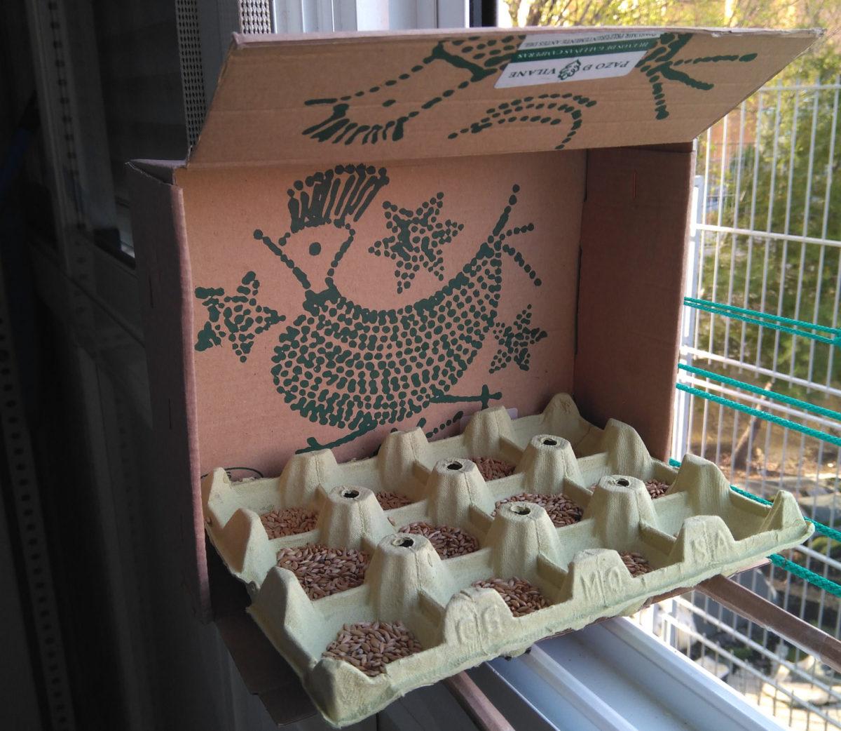Comederos para aves o gatos con la caja de huevo campero Pazo de Vilane