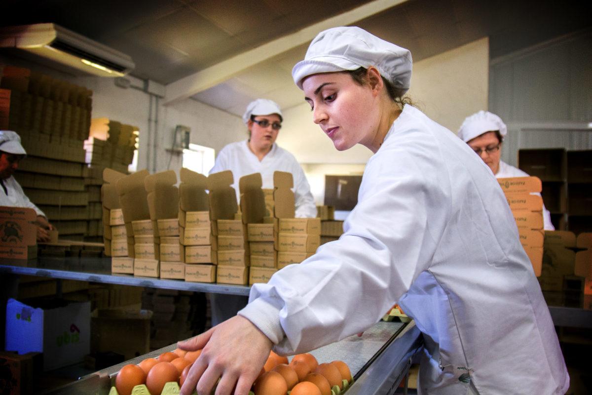 El huevo campero Pazo de Vilane permite llevar adelante un proyecto de desarrollo rural en el corazón de Galicia