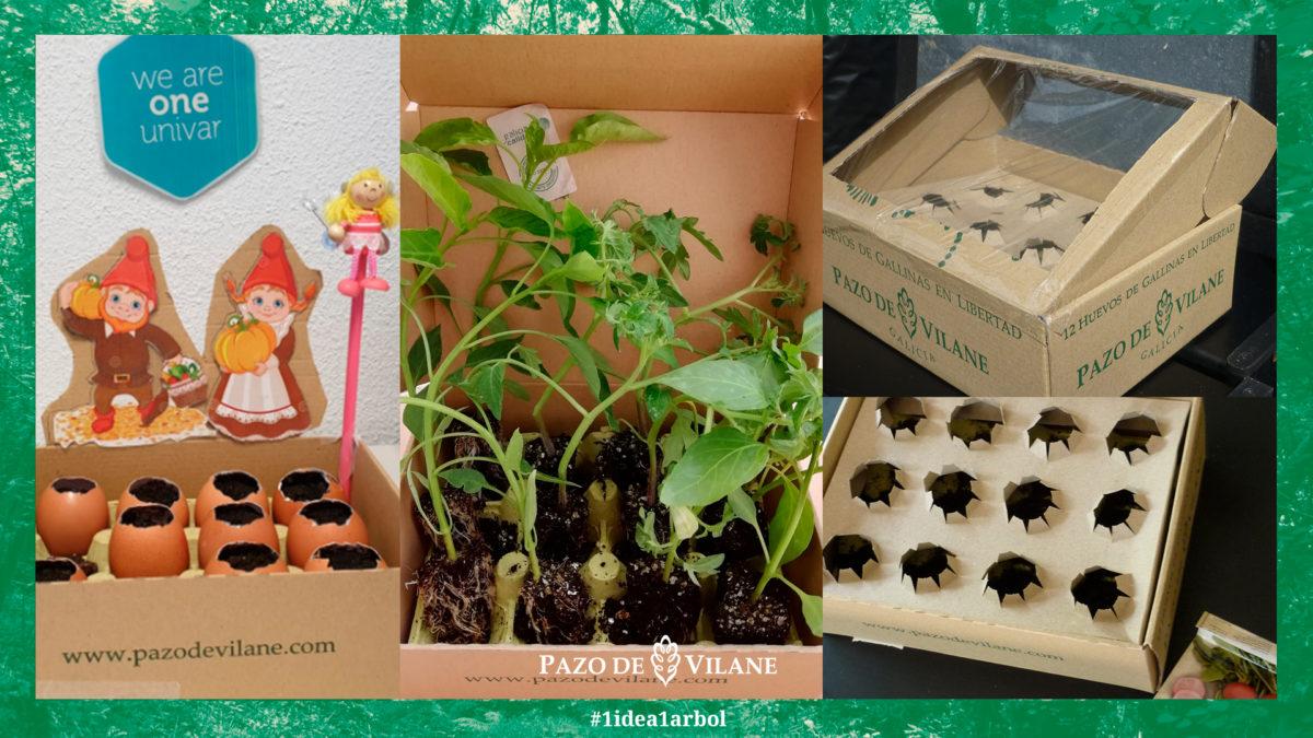 La caja de huevos Pazo de Vilane, tu mejor aliada para la jardinería