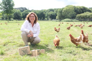 Emprender con 50 gallinas: así se triunfa por huevos