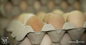 Día Mundial del Huevo: descubre todas sus propiedades