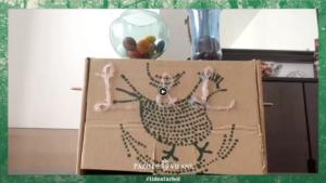 Dispensando golosinas con las cajas Pazo de Vilane