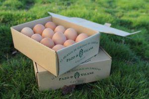 La caja de huevo campero Pazo de Vilane se convierte en un herbario