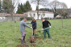 Comeza a 6ª edición do concurso de reutilización 1 idea, 1 árbol