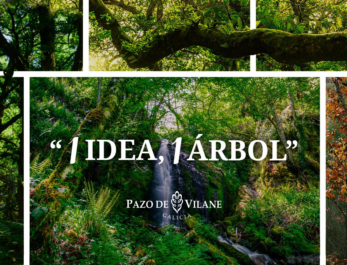 Sétima edición de 1 idea, 1 árbore