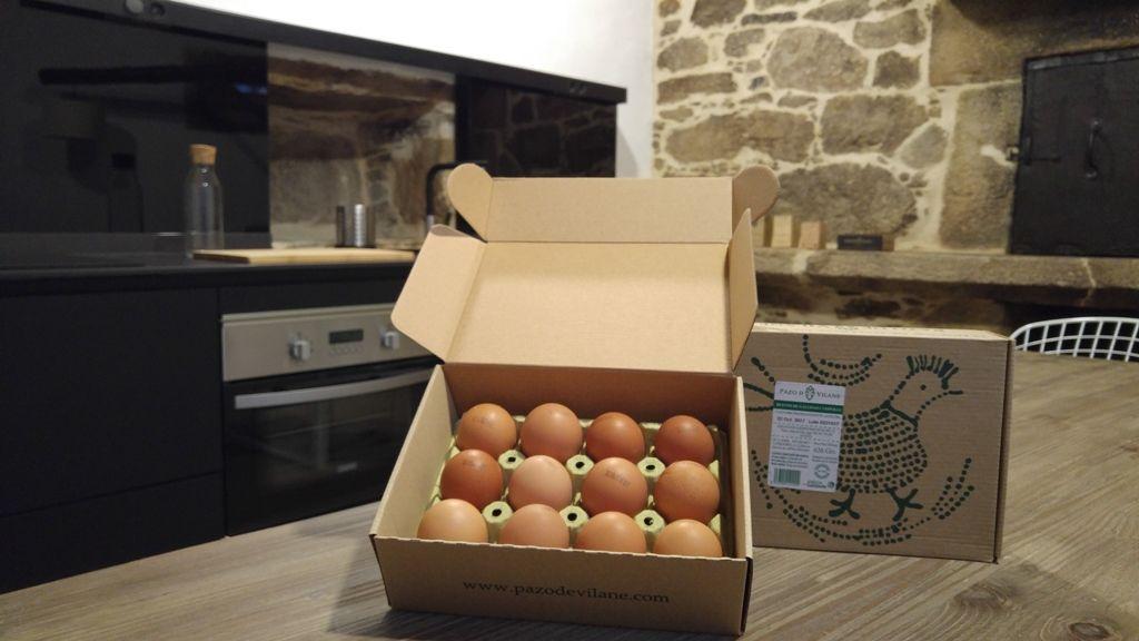 códigos ovos