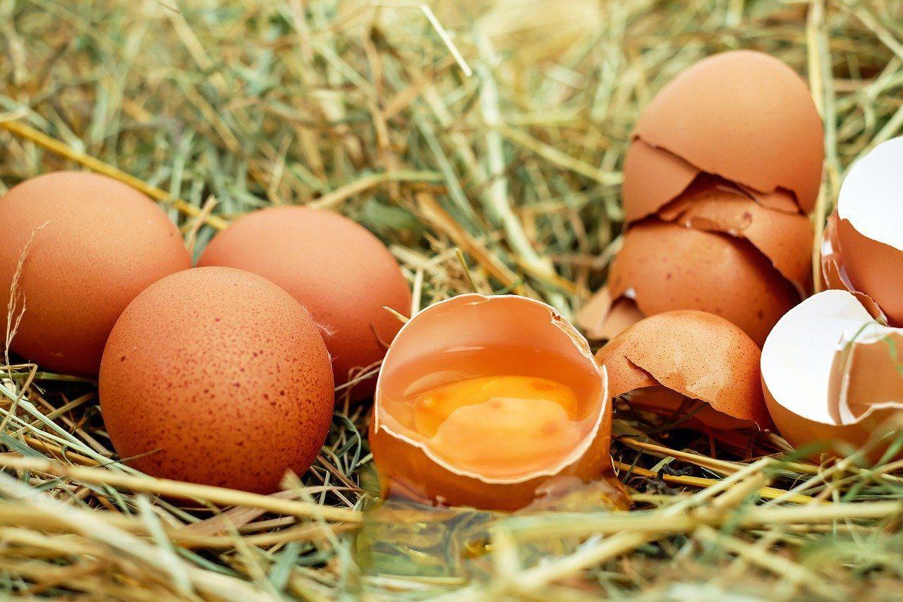 Aumentar las defensas con huevos camperos