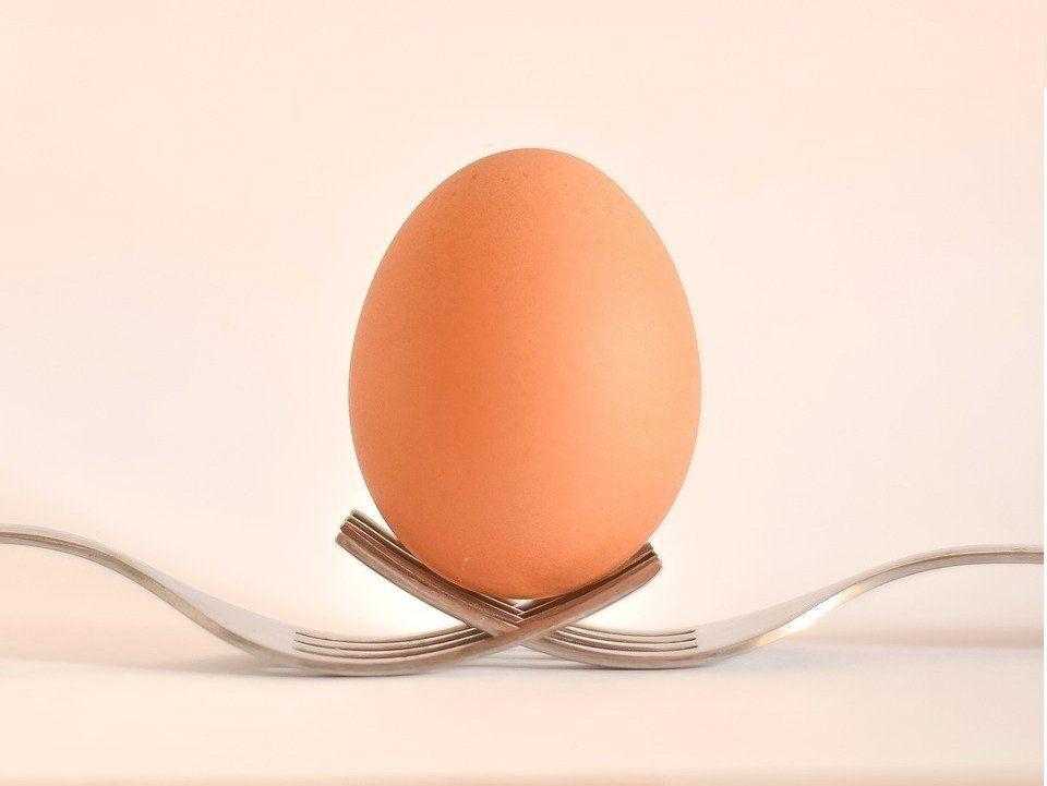 Huevo campero de Pazo de Vilane sobre dos tenedores.