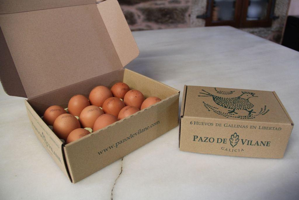 Huevos marrones de Pazo de Vilane. Los huevos marrones debe su color a la protoporfirina.