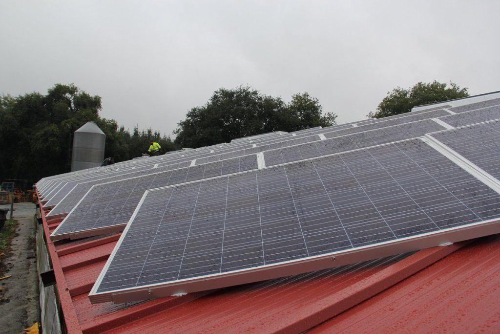 Placas solares en las instalaciones de Pazo de Vilane, en busca de la sostenibilidad de la empresa.