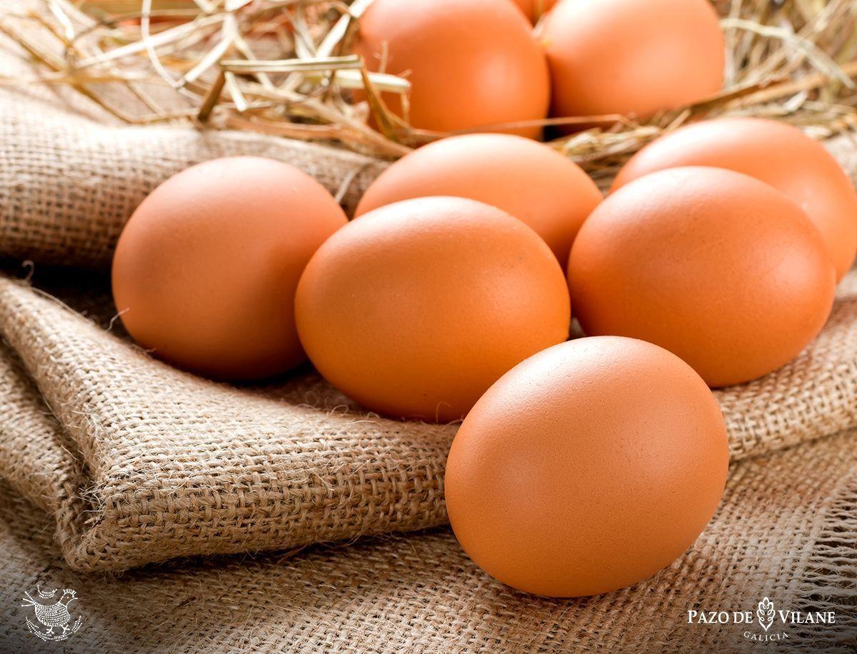 Huevos camperos de Pazo de Vilane, ricos en proteínas
