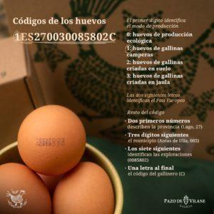 Códigos dos Ovos: que significan e como interpretalos