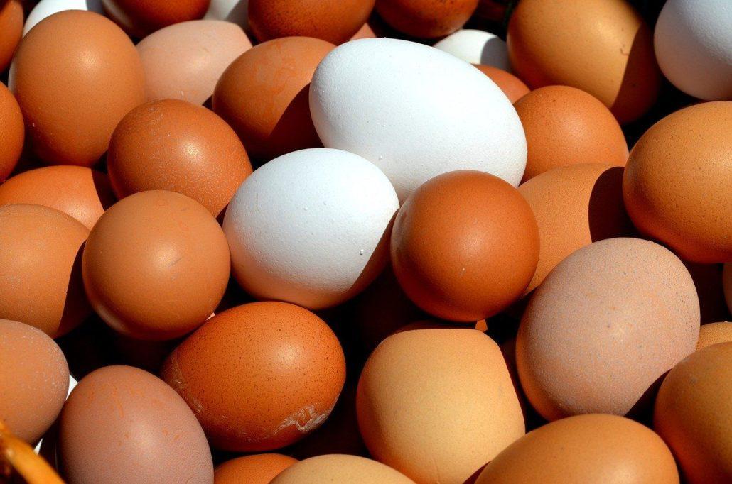 Huevos marrones (morenos) y blancos