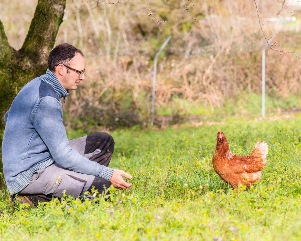 Empleado de Pazo de Vilane con gallina Isa Brown.