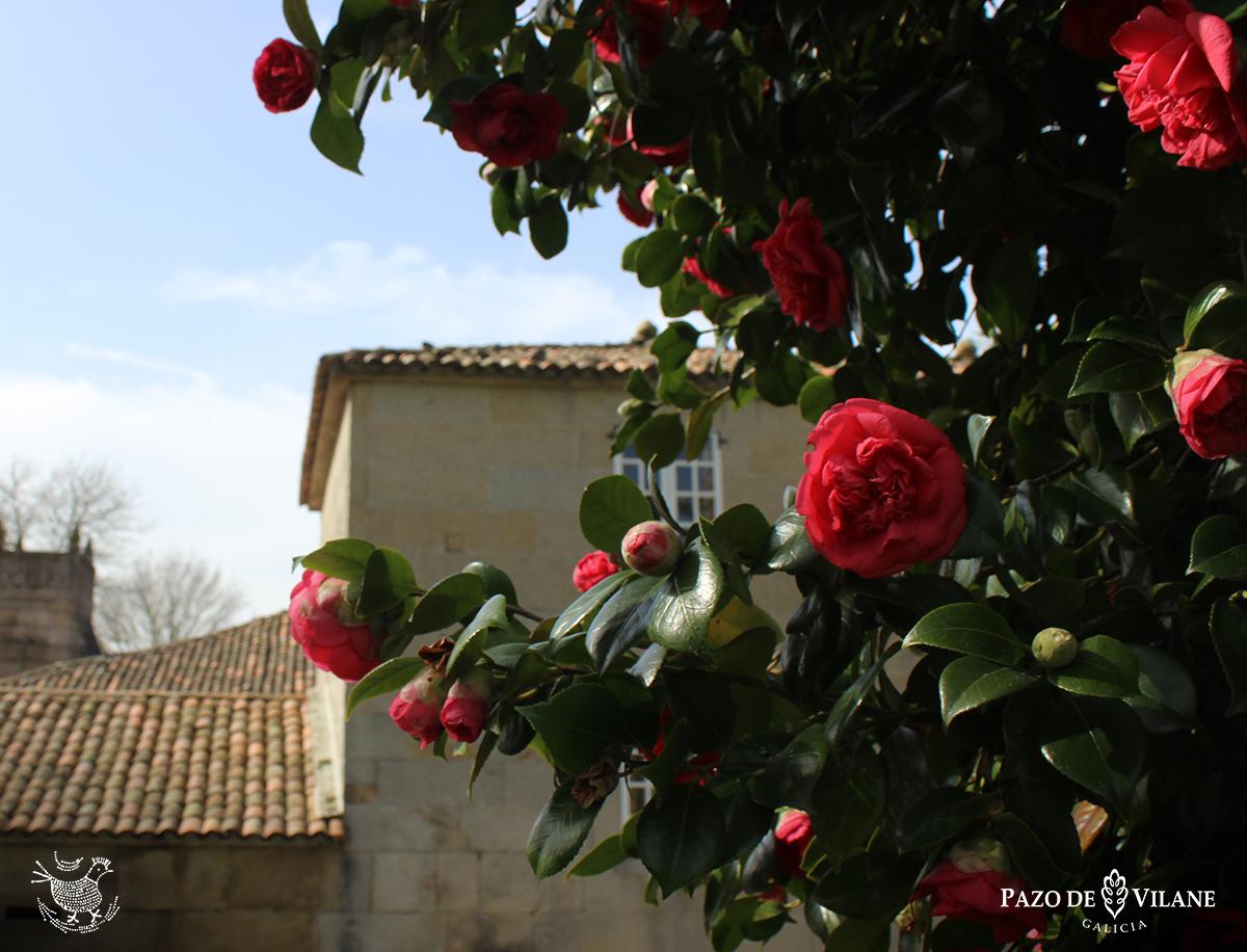 A primavera en Pazo de Vilane