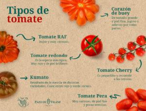 Tipos de tomates: as variedades máis consumidas