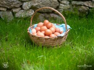 Las vitaminas del huevo