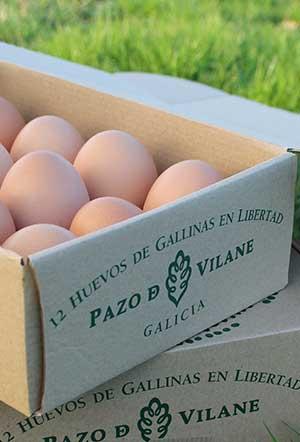 Cajas de huevos camperos