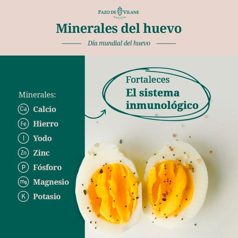 Infografía sobre el valor nutricional del huevo (minerales).