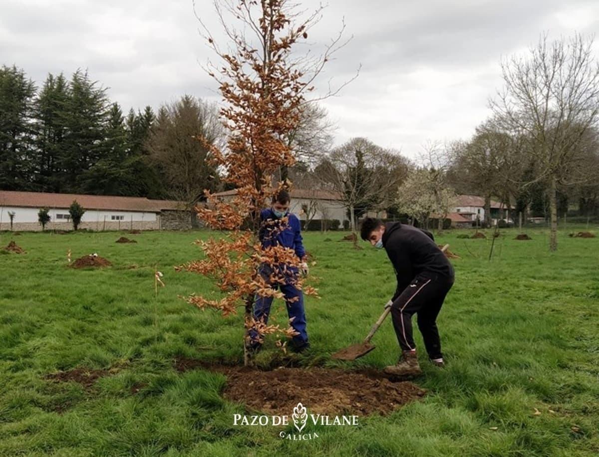 Plantamos dos nuevos bosques en Pazo de Vilane con los árboles de #1IDEA1ARBOL 2020