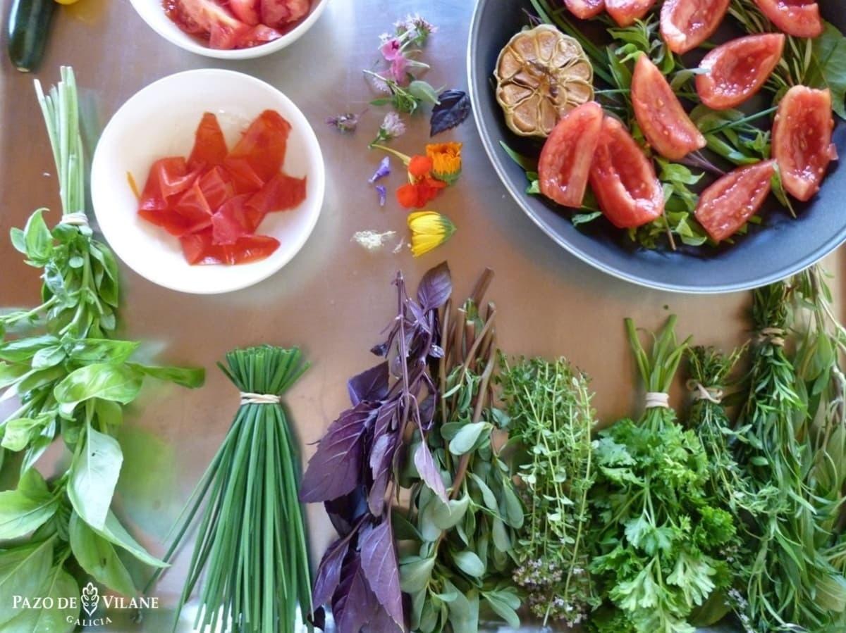 Hierbas aromaticas y tomates