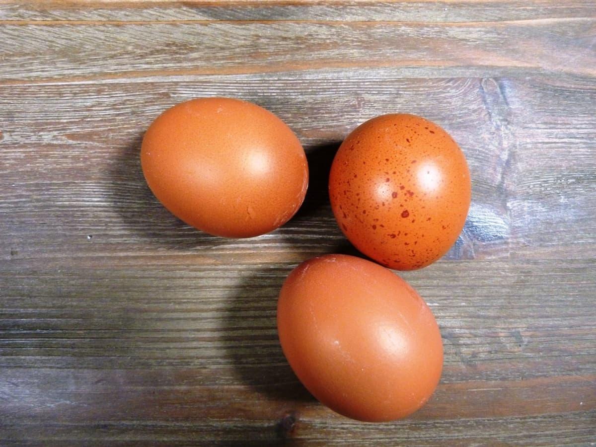 Partes del huevo: cuáles son y para qué sirven