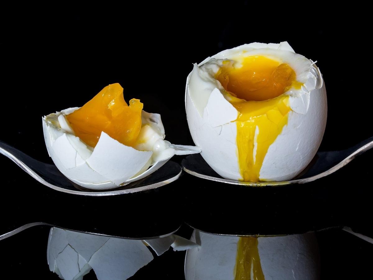 Huevo blanco fresco pasado por agua