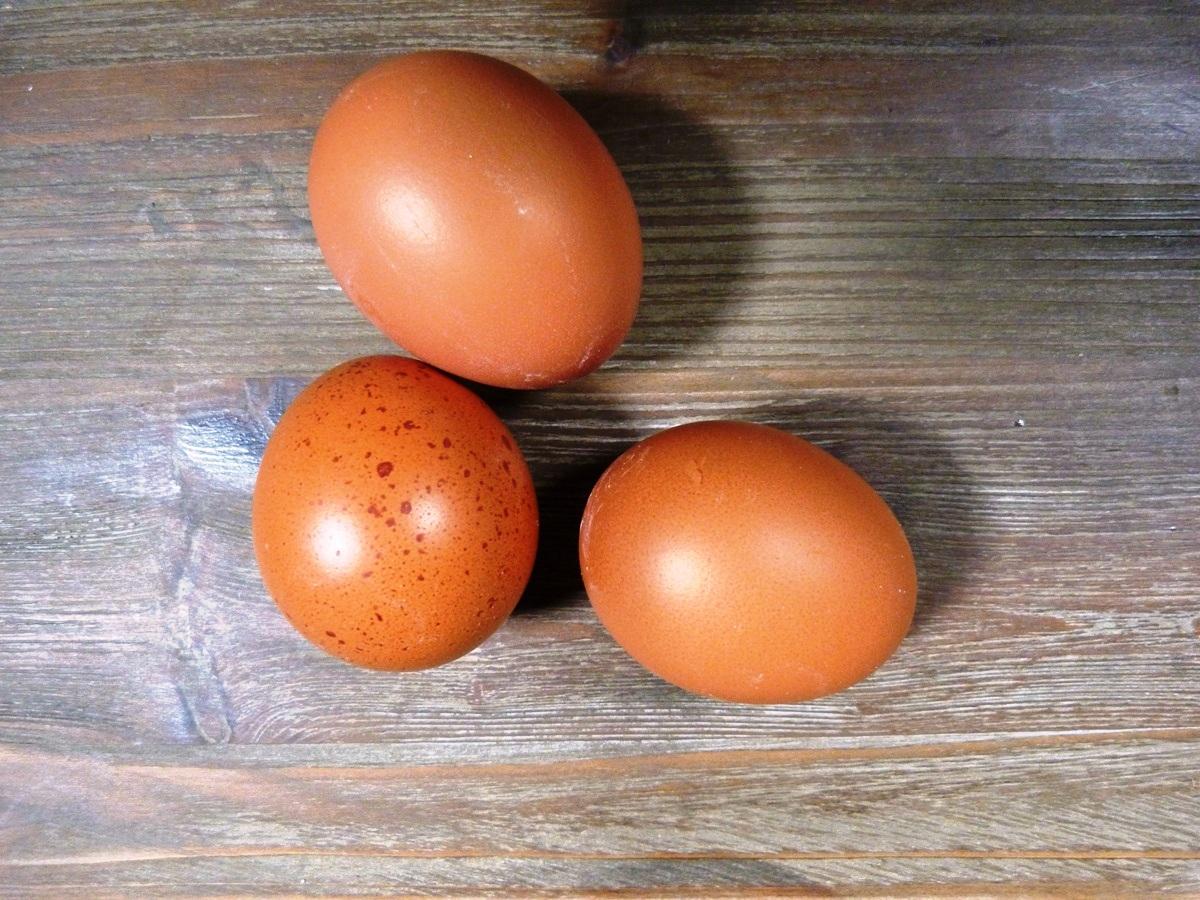 Tres huevos morenos sobre mesa de madera