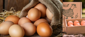 Gaña ovos campeiros Pazo de Vilane para un ano