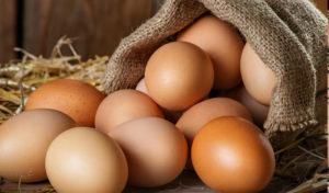 Gana huevos camperos Pazo de Vilane para un año